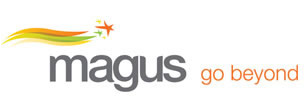 Magnus Financial Management